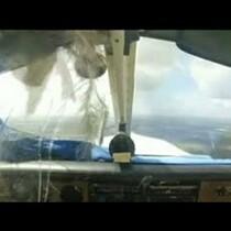 SEE IT! Bird Crashes Through Plane Windshield. Pilots Shirt is LOL!