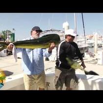 Sea Lion Steals Fisherman's Prize Catch