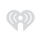 TOUGH ANIMALS: Musk OX vs. Giant Rock