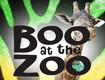 Brevard Zoo: Boo at the Zoo