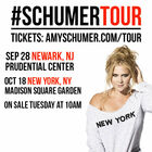 See Amy Schumer Live at Madison Square Garden on October 18th!