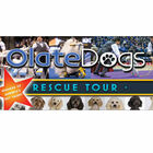WIN Tickets to See Olate Dogs!
