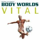 Body Worlds VITAL