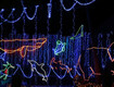 Win a 4-pack of tickets to Reid Park's Holiday Zoo Lights!