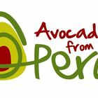 Enter your favorite Peruvian Avocado Recipe and you could win $50!