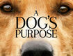 Win Passes To The New Movie A Dog's Purpose!