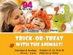 Win a four pack of tickets to the Zoo Boo!