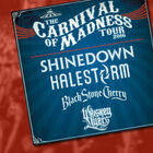 Carnival of Madness