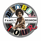 Bad Boy Family Reunion Tour Tickets