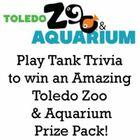 Tank Trivia