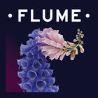 Flume Tickets