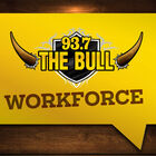 The Bull Workforce