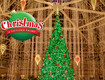 Win a 2 Night Stay for 4 During Christmas at Gaylord Palms