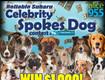 Enter the Reliable Subaru Spokes Dog Contest!