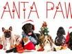 Santa Paws - Upload Your Pet Photo to Win $1,000!