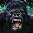 Universal Orlando's Skull Island: Reign of Kong