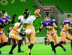 Northern Colorado is Getting a Lingerie Football Team