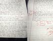 His Cheating Girlfriend Sent Him An Apology Note...So He Graded It And Sent It Back!