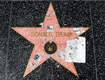 The Man Who Vandalized Trump's Hollywood Star Is Actually Punished for His Crime