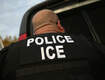 Miami-Dade Judge Rejects Trump Deportation Policy