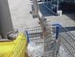 Dead Shark Found In A Walmart Shopping Cart