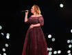 Beetle Crawls on Adele's Leg During Show!!
