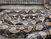 Indonesian Man Found Swallowed By Giant Python!