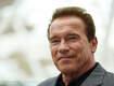Schwarzenegger On Facebook: Congress Gets Failing Grade