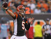 Report: The Bengals And Browns Have Talked About An AJ McCarron Trade