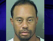 Tiger Woods DUI Mugshot Says It All