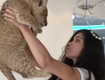 Underwear Model Peed On While Holding Up Lion Cub