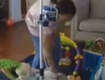 Nurse Caught on Nanny Cam Beating Special Needs 2-Year-Old