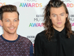 Louis Tomlinson On Harry Styles Romance Rumors: 'There's No Truth'