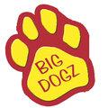 The BigDogz