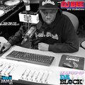 DJ Bee