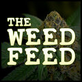 The Weed Feed - Marijuana and Stoner Chronic News