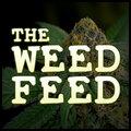 The Weed Feed - Marijuana and Stoner Chronic News
