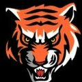 Ironton Fighting Tigers
