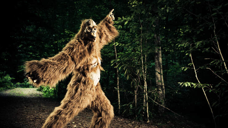 LATEST SIGHTING: Man In Iowa Photographs What He Believes Is Bigfoot