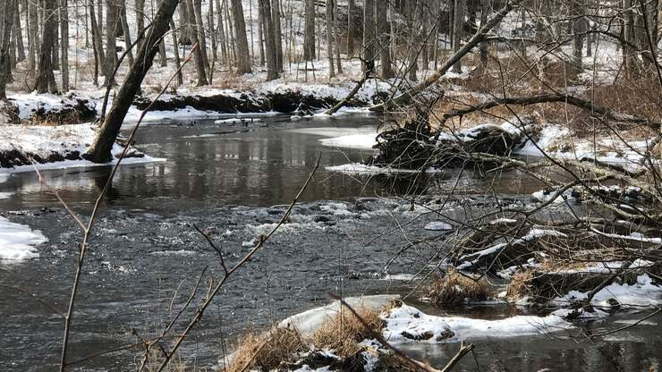 TMSG: NY State Trooper Rescues 2-Year-Old From Stream