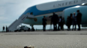 image for Chartered White House Press Plane Delayed Due To Swarm Of Cicadas