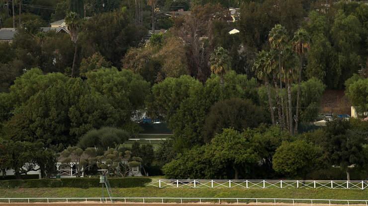 Horse Euthanized After Racing Injury at Santa Anita Park