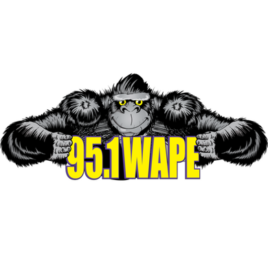 95.1 WAPE logo