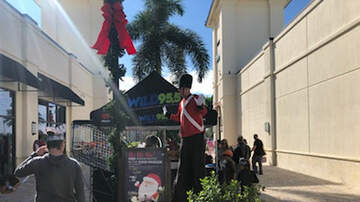 Photos - Santa comes to town with the WiLD Street Team!