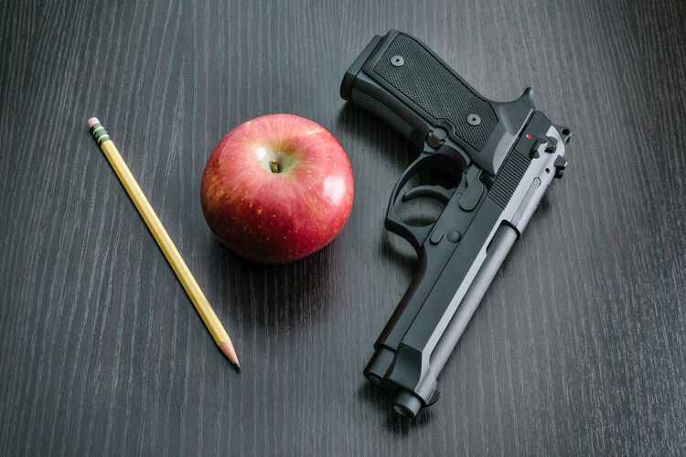 9mm Handgun for Teacher (Credit: iStock / Getty Images Plus)