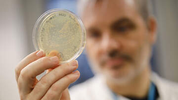 image for Cambridge-Based Biotech Company Sends Coronavirus Vaccine For Testing