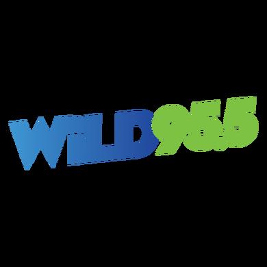 WiLD 95.5 logo