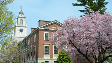 Local News - Data: 7 Of The 25 Most Competitive High Schools Are In Massachusetts