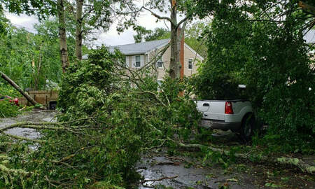 Local News - Cleanup Begins After Tornado Confirmed On Cape Cod