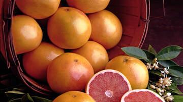Harold Mann - Louisiana Couple's Giant Grapefruit Breaks Two Records